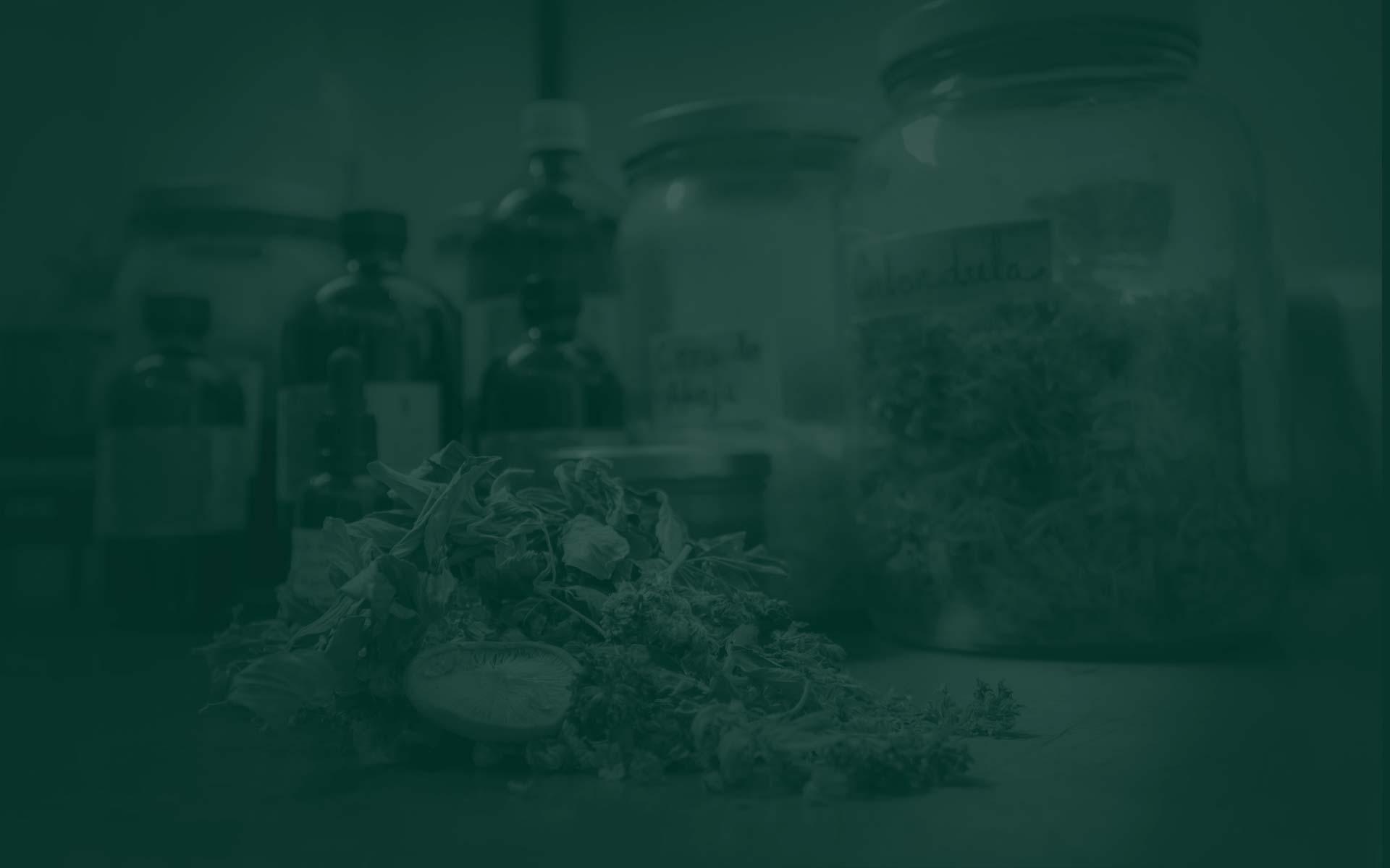 Botiquín natural e introducción a la Herbología